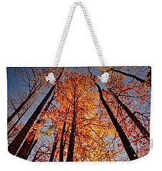 Fall Trees Sky Weekender Tote Bag