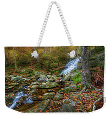 Weekender Tote Bag featuring the photograph Falls Brook Autumn by Bill Wakeley