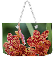 Family Of Orange Spotted Orchids Weekender Tote Bag