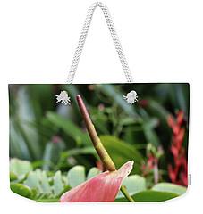 Flamingo Flower - Anthurium Andreanum Weekender Tote Bag