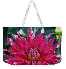 Weekender Tote Bag featuring the photograph Floral Melody #4 by Ahma's Garden