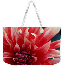 Weekender Tote Bag featuring the photograph Floral Melody #5 by Ahma's Garden