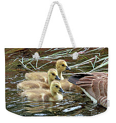 Weekender Tote Bag featuring the photograph Following Mom's Lead by Debbie Stahre