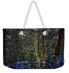 Weekender Tote Bag featuring the photograph Forest Shadows by Dan Miller