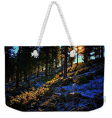 Weekender Tote Bag featuring the photograph Forest Sunrise by Dan Miller