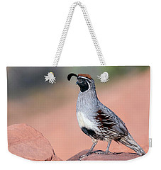 Gambels Quail Two Weekender Tote Bag