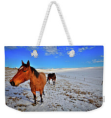 Weekender Tote Bag featuring the photograph Geldings In The Snow by David Patterson