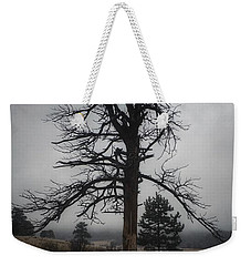 Weekender Tote Bag featuring the photograph Ghostly Snag by Dan Miller