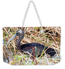 Weekender Tote Bag featuring the photograph Glossy Ibis 123015 by Rick Veldman