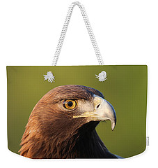 Weekender Tote Bag featuring the photograph Golden Eagle 5151801 by Rick Veldman