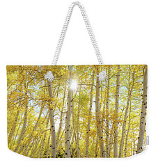 Weekender Tote Bag featuring the photograph Golden Sunshine On An Autumn Day by James BO Insogna