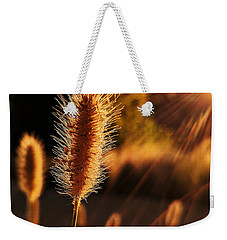 Golden Wildgrass Weekender Tote Bag