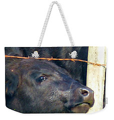 Weekender Tote Bag featuring the photograph Good Morning by Rosanne Licciardi