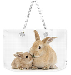 Weekender Tote Bag featuring the photograph Grass Is For Sharing by Warren Photographic