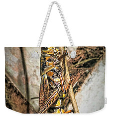 Weekender Tote Bag featuring the photograph Grasshopper by Vincent Autenrieb