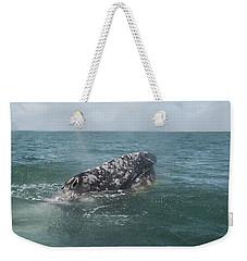Gray Whale In Bahia Magdalena Weekender Tote Bag