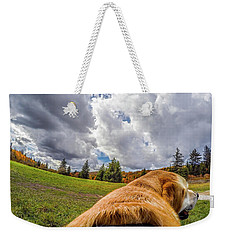 Weekender Tote Bag featuring the photograph Grayson Highlands Color By Jackson by Matthew Irvin