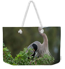 Weekender Tote Bag featuring the photograph Great Blue Heron Portrait by Donald Brown
