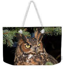 Weekender Tote Bag featuring the photograph Great Horned Owl 10181802 by Rick Veldman