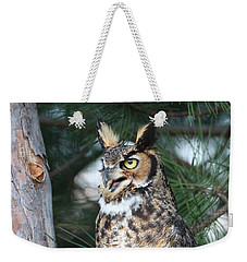 Weekender Tote Bag featuring the photograph Great Horned Owl 5151801 by Rick Veldman