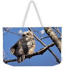 Weekender Tote Bag featuring the photograph Great Horned Owlet 42915 by Rick Veldman