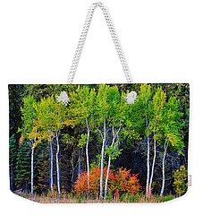 Green Aspens Red Bushes Weekender Tote Bag