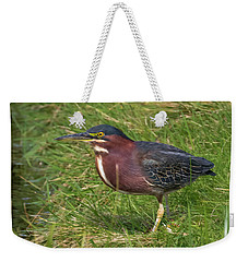 Weekender Tote Bag featuring the photograph Green Heron Up Close by Ricky L Jones