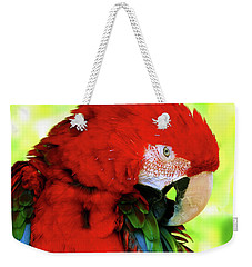 Weekender Tote Bag featuring the photograph Green-winged Macaw by Debbie Stahre