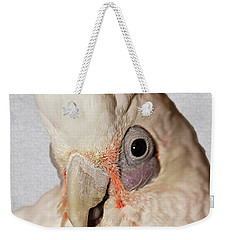 Weekender Tote Bag featuring the photograph Gremlin by Debbie Stahre