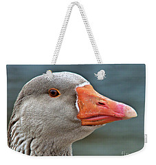 Weekender Tote Bag featuring the photograph Grey Goose by Debbie Stahre