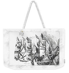 Weekender Tote Bag featuring the photograph Grey Trio by Brad Allen Fine Art