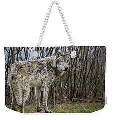 Hangin' Out Weekender Tote Bag