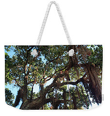 Weekender Tote Bag featuring the photograph Hanging Vine Tree by Mark Dodd