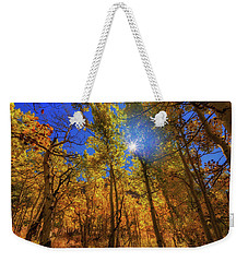 Weekender Tote Bag featuring the photograph Happy Fall by Tassanee Angiolillo