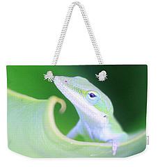 Hello, Anole. 2 Weekender Tote Bag