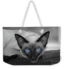 Hey There Blue Eyes - Siamese Cat Weekender Tote Bag