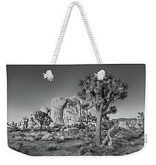 Hidden Valley Rock Weekender Tote Bag