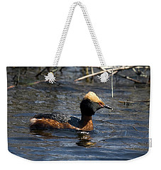 Weekender Tote Bag featuring the photograph Horned Grebe 102713 by Rick Veldman