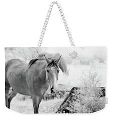 Horse In Infrared Weekender Tote Bag