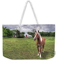 Horse In Pasture Weekender Tote Bag