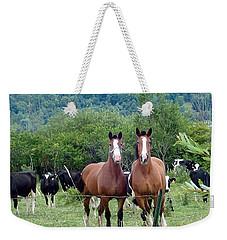 Horses And Cows.  Weekender Tote Bag