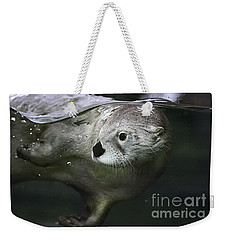 I Otter Be Swimming Weekender Tote Bag
