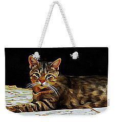 Weekender Tote Bag featuring the photograph Indecision Rules Okay by Dorothy Berry-Lound