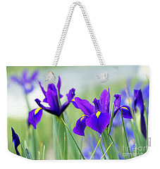 Weekender Tote Bag featuring the photograph Iris Hollandica Salvatore Flowers by Tim Gainey