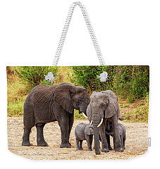 Weekender Tote Bag featuring the photograph It's Twins by Kay Brewer
