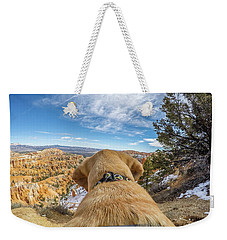 Weekender Tote Bag featuring the photograph Jackson At Bryson Canyon by Matthew Irvin