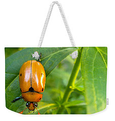 June Bug Weekender Tote Bag