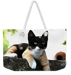 Just Chillin Tricolor Cat Weekender Tote Bag
