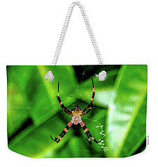 Just Hanging Weekender Tote Bag