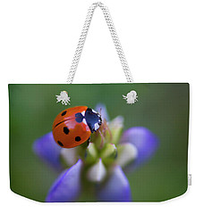 Weekender Tote Bag featuring the photograph Lady Bug by John Rodrigues